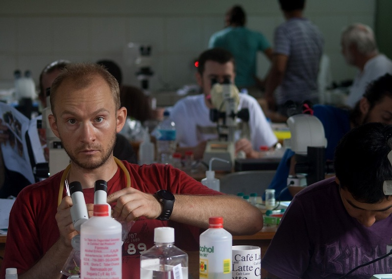 Piotr identifying ants during the Ant Course in Peru in 2013